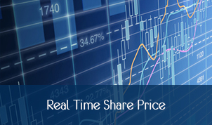 Real Time Share Price